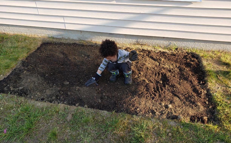 My Son in the Garden